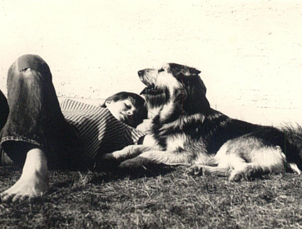 Susanne und die Hunde