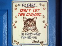 Don't let the cats out